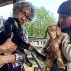 Grandma's New Kids