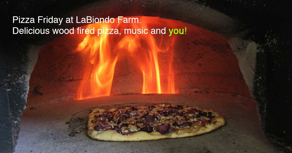 Next Pizza Friday is July 8,  4PM -- 7:30 PM
